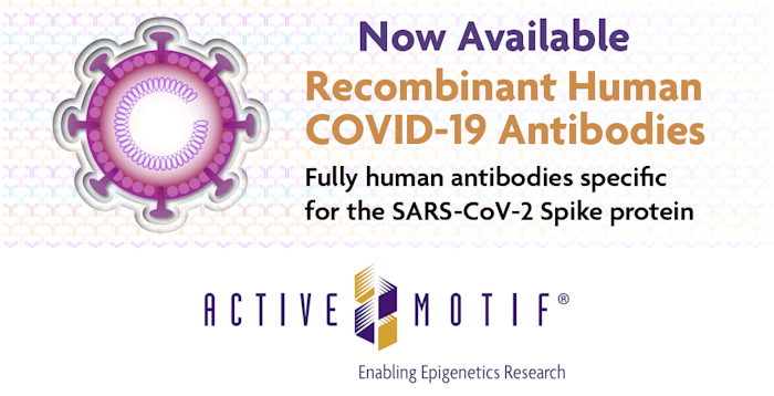 Recombinant_Antibodies_Active_Motif