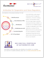 Active Motif Antibodies flyer