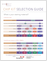 ChIP Kit Selection Guide