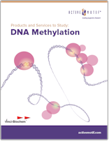 Active Motif DNA Methylation Products and Services