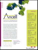 Ancell_Antibodies