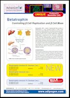 Betatrophin