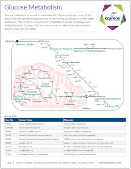Cayman Glucose Metabolism