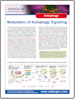 Flyer_Adipogen_Autophagy_2014