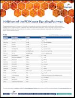 PI3K Signaling