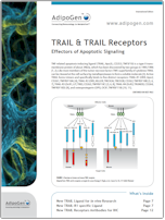 TRAIL and TRAIL Receptors